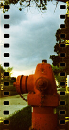 "Picture named ""Fire Hydrant"" with normal film development"