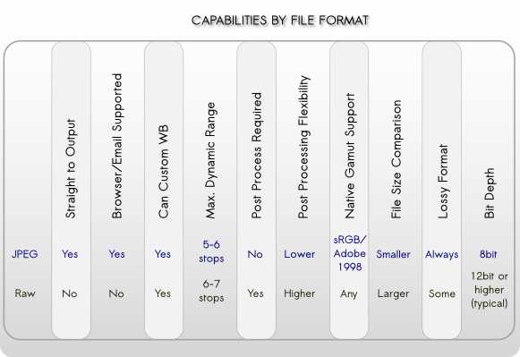 Jpeg Versus Raw, Capabilities by File Format Type