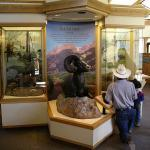 Rocky Mountain National Park Visitor Center