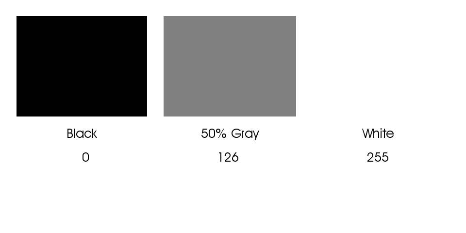 The 256 levels represent visual density ranging from black through white.