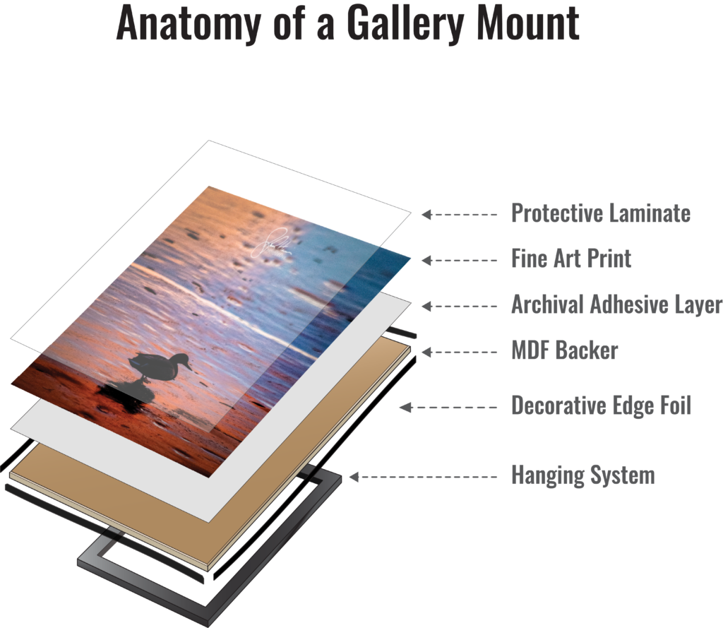 Anatomy of a Gallery Mount